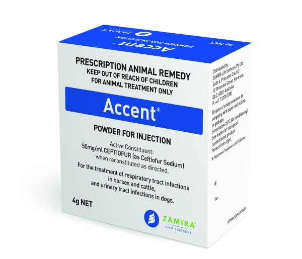 Accent Ceftiofur - Fast acting, highly effective broad spectrum antibiotic for treatment of respiratory tract infections in cattle and horses. High purity and bioavailability | Zamira Australia