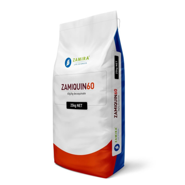 ZAMIQUIN 60 with Decoquinate is a quinolone coccidiostat can be utilized effectively in the prevention and control of coccidiosis in broilers and ruminants   Zamira Australia