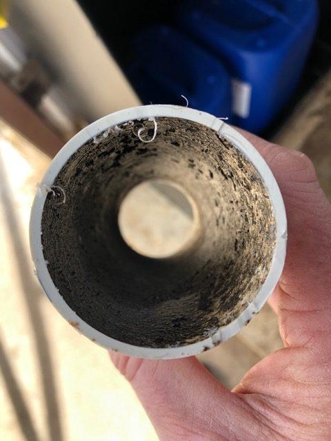 Biofilm inside a pipe on a farm   Zamira Australia
